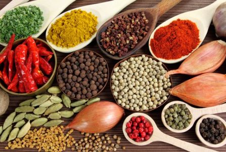 The_Spices_of_India with best mixer grinders